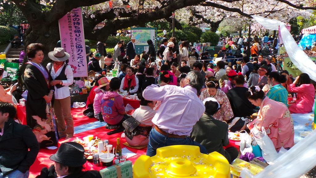Hanami cherry blossom watching Ueno park