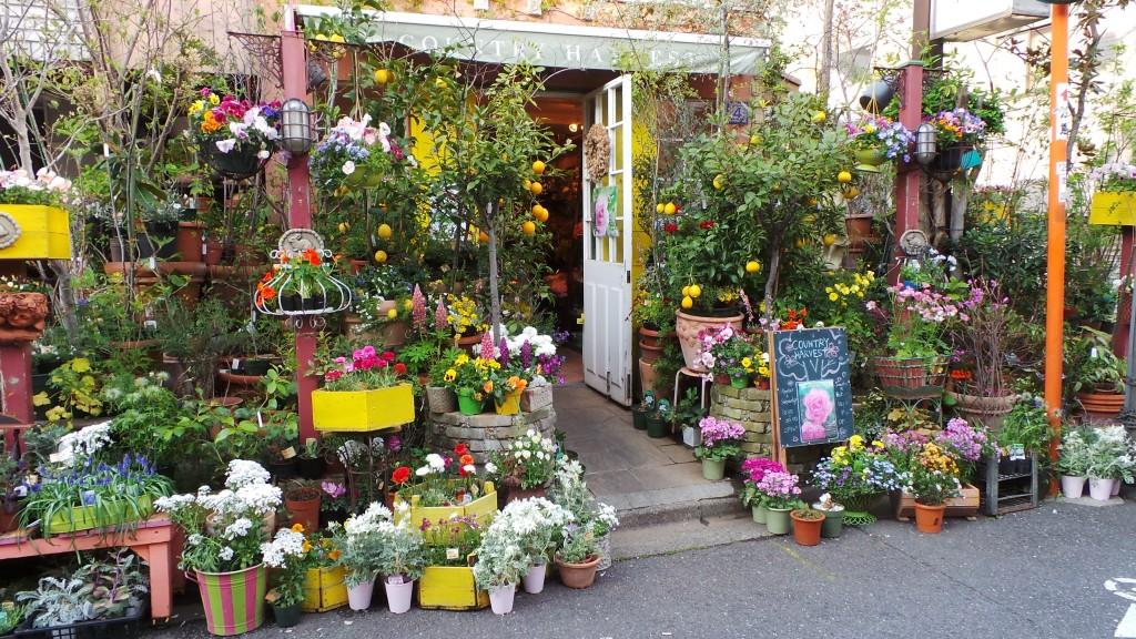 Flower shop in Tokyo