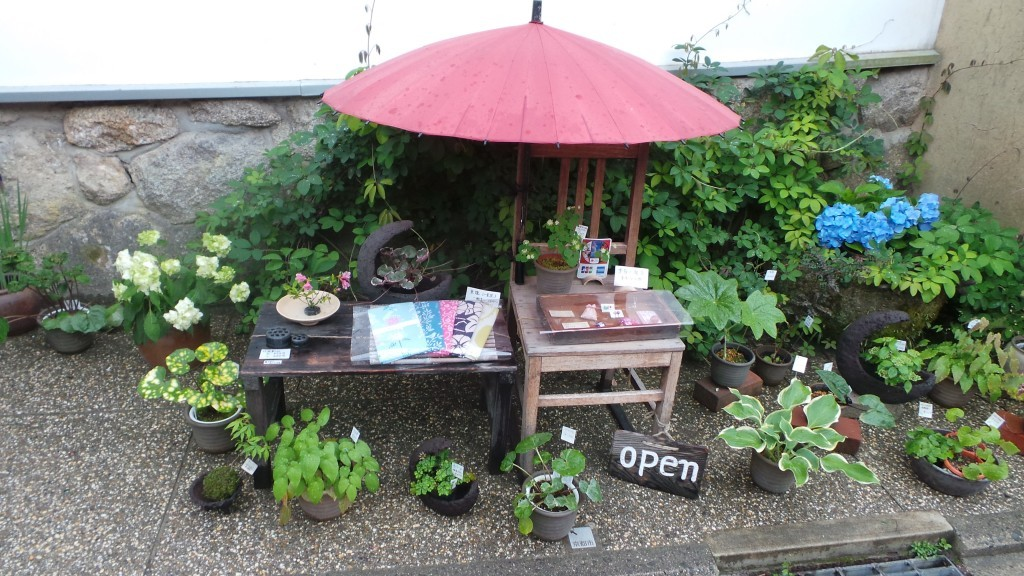 'Green' shop with tiny garden in Kyoto