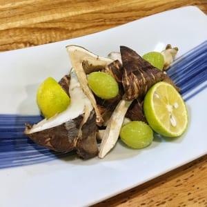 ginkgo biloba noten japan
